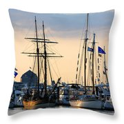 Blue Flags Throw Pillow