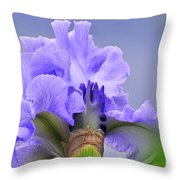 Blue Flamenco Throw Pillow