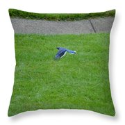 Blue Flight Throw Pillow