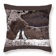 Blue Footed Boobies Displaying Throw Pillow