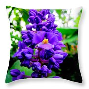 Blue Ginger Throw Pillow