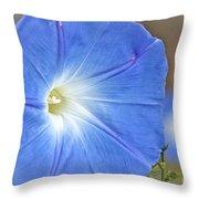 Blue Glories Throw Pillow