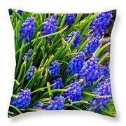 Blue Grape Hyacinth Throw Pillow