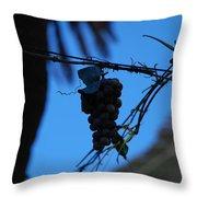 Blue Grapes Throw Pillow
