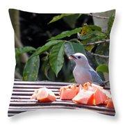Blue-grey Tanager 1 Throw Pillow