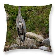 Blue Heron   #0303 Throw Pillow
