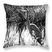 Blue Heron 4bw Throw Pillow