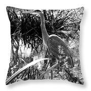 Blue Heron 7bw Throw Pillow