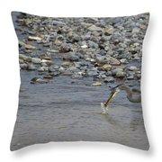 Blue Heron And Fish   #9619 Throw Pillow