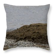 Blue Heron And Fish   #9642 Throw Pillow