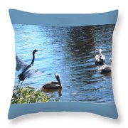 Blue Heron And Pelicans Throw Pillow