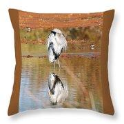 Blue Heron Grooming Throw Pillow