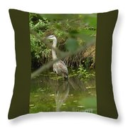 Blue Heron Hiding Reflection Throw Pillow