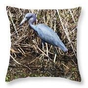 Blue Heron Lacassine Throw Pillow