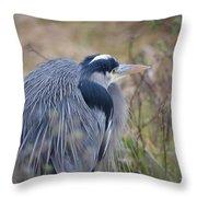 Blue Heron Reflecting Throw Pillow