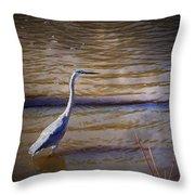 Blue Heron - Shallow Water Throw Pillow