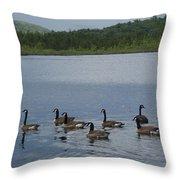Blue Hills Geese Throw Pillow