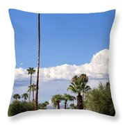 Blue Horizon Palm Springs Throw Pillow