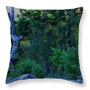 Blue Hour Throw Pillow