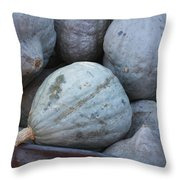 Blue Hubbard Squash Throw Pillow