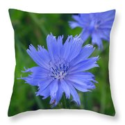 Blue Hue Hue Throw Pillow