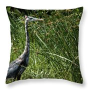 Blue In The Reeds Throw Pillow