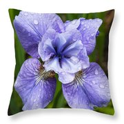 Blue Iris Flower Raindrops Garden Virginia Throw Pillow