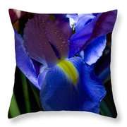 Blue Iris Throw Pillow by Joann Vitali