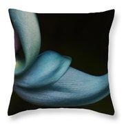 Blue Jade 1 Throw Pillow