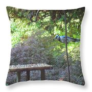 Blue Jay At Lunch Throw Pillow