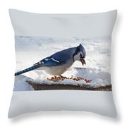 Blue Jay Chow-down Throw Pillow