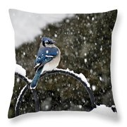 Blue Jay In Snow Storm Throw Pillow