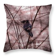 Blue Jay In The Willow Throw Pillow