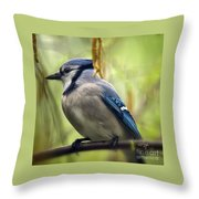 Blue Jay On A Misty Spring Day - Square Format Throw Pillow
