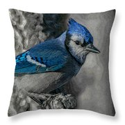Blue Jay Painterly Throw Pillow