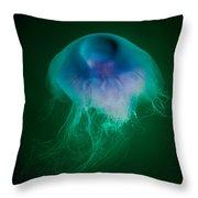 Blue Jelly Series 4 Throw Pillow