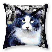 Blue Kitty Two Throw Pillow