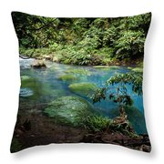 Blue Lagoon Throw Pillow
