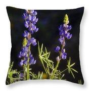 Blue Lupine  Throw Pillow