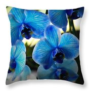 Blue Monday Throw Pillow