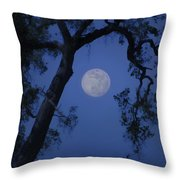 Blue Moon Horse And Oak Tree Throw Pillow