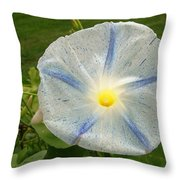 Spectacular Blue Morning Glory Throw Pillow