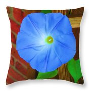 Blue Morning Glory  Throw Pillow