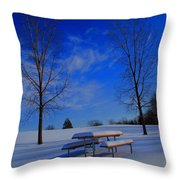 Blue On A Snowy Day Throw Pillow