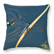Blue On Blue Throw Pillow