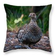 Blue Or Dusky Grouse Portrait Throw Pillow
