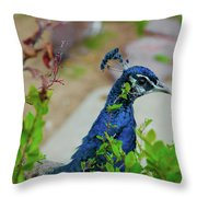Blue Peacock Green Plants Throw Pillow