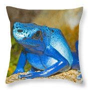 Blue Poison Dart Frog Throw Pillow
