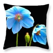 Blue Poppy Flowers # 4 Throw Pillow