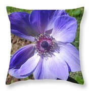 Blue Poppy Anemone Throw Pillow
